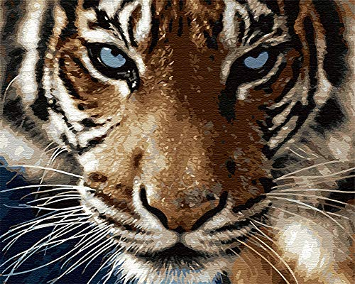 DIY Paint by Numbers for Adults, Komidea Paint by Number Kits on Canvas for Kids Beginner, Majestic Tiger 16x20inch