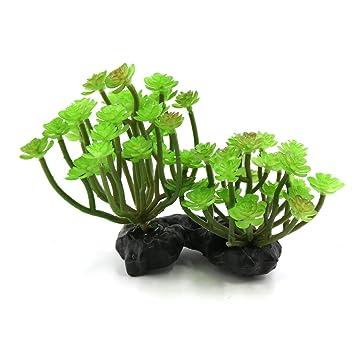 sourcingmap® Verde De Plástico Acuario Terrario Para Reptiles Plantas Ornamentales W Base De Cerámica: Amazon.es: Productos para mascotas