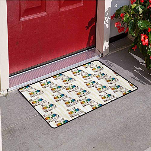 Jinguizi Owl Front Door mat Carpet Sketch Art of Funny Owls with Colorful Glasses on Striped Backdrop with Grunge Effect Machine Washable Door mat W47.2 x L60 Inch Multicolor