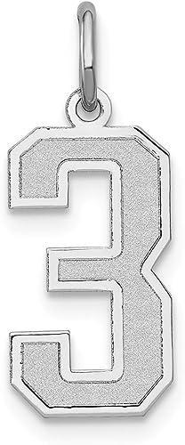14k White Gold Medium Satin Number 8 Charm