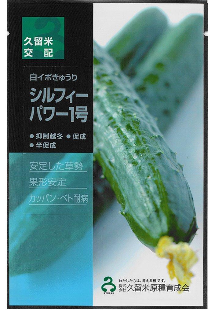 久育種苗 シルフィーパワー1号 (きゅうり) 350粒詰 [久留米原種育成会] B014H0IHDK