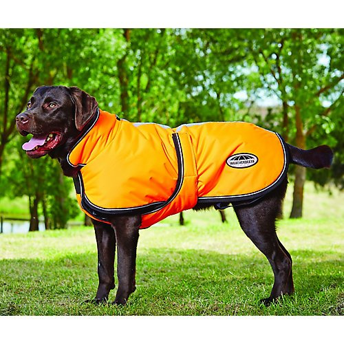 wb-reflective-parka-300d-deluxe-lite-dog-coat-22-o