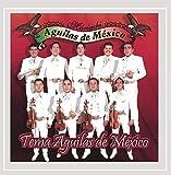 Tema Aguilas De Mexico