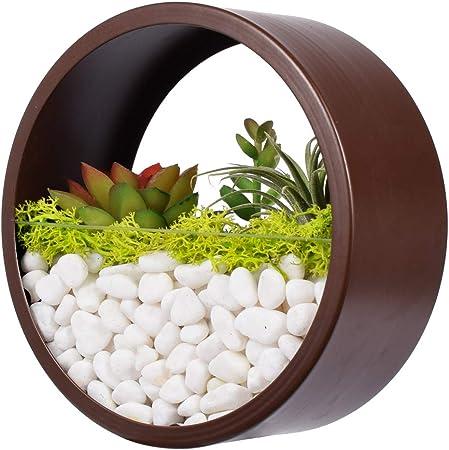 wall hanging succulent planter metal modern