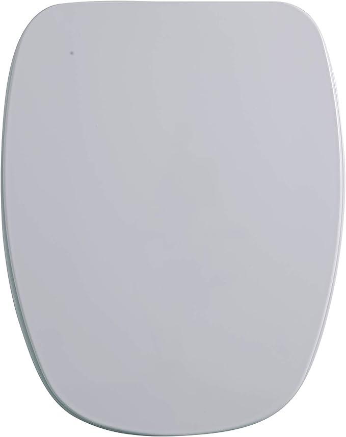 GALA G5134001 Tapa y Asiento Fijo para Inodoro Colección Diana, Acabado Blanco (Ref 51340), Urea, 37.5 x 4.8 x 43.4 ...