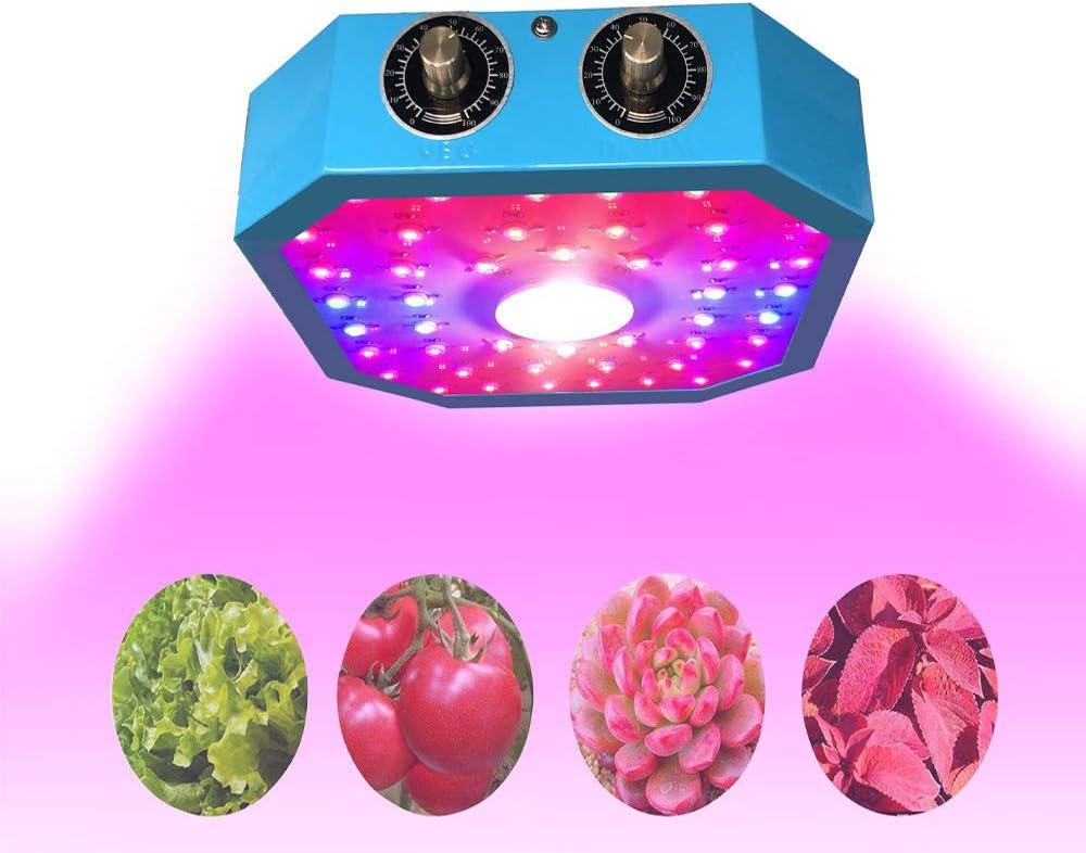 ZWD Led Planta de Cultivo Lámpara de luz Regulable 1000 w mazorca Full Spectrum Phyto Lamp Fitolampy para sembrar en Interiores Flor Plantas Vegetales Crecen lámpara