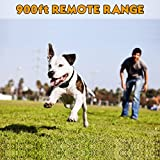 Upgraded Version Petrainer Dog Shock Collar 900 ft Remote Dog Training Collar with Beep/Vibration/Shock Electric Dog Collar for All Size Dogs, Rechargable & Rainproof