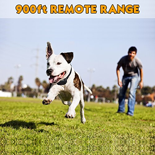 Upgraded-Version-Petrainer-Dog-Shock-Collar-900-ft-Remote-Dog-Training-Collar-with-BeepVibrationShock-Electric-Dog-Collar-for-All-Size-Dogs-Rechargable-Rainproof