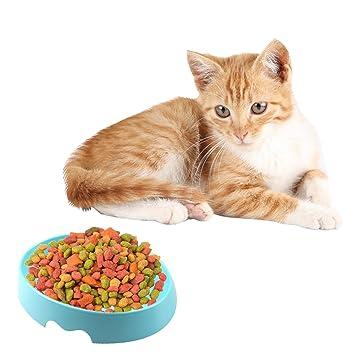 Gato para mascotas Cuenco con lindos gatos Plato pintado Antideslizante Diseño antideslizante Bolso para alimentos respetuoso ...