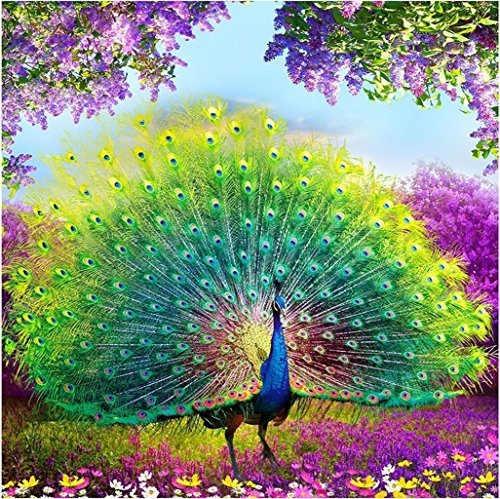 Peacock Cross Stitch - DIY 5D Diamond Painting by Number Kit, Proud Peacock Crystal Rhinestone Embroidery Cross Stitch Ornaments Canvas Wall Decor