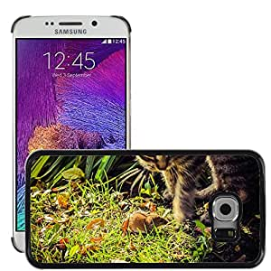 Super Stella Slim PC Hard Case Cover Skin Armor Shell Protection // M00145186 Mouse Cat Field Mouse Mammal // Samsung Galaxy S6 EDGE (Not Fits S6)