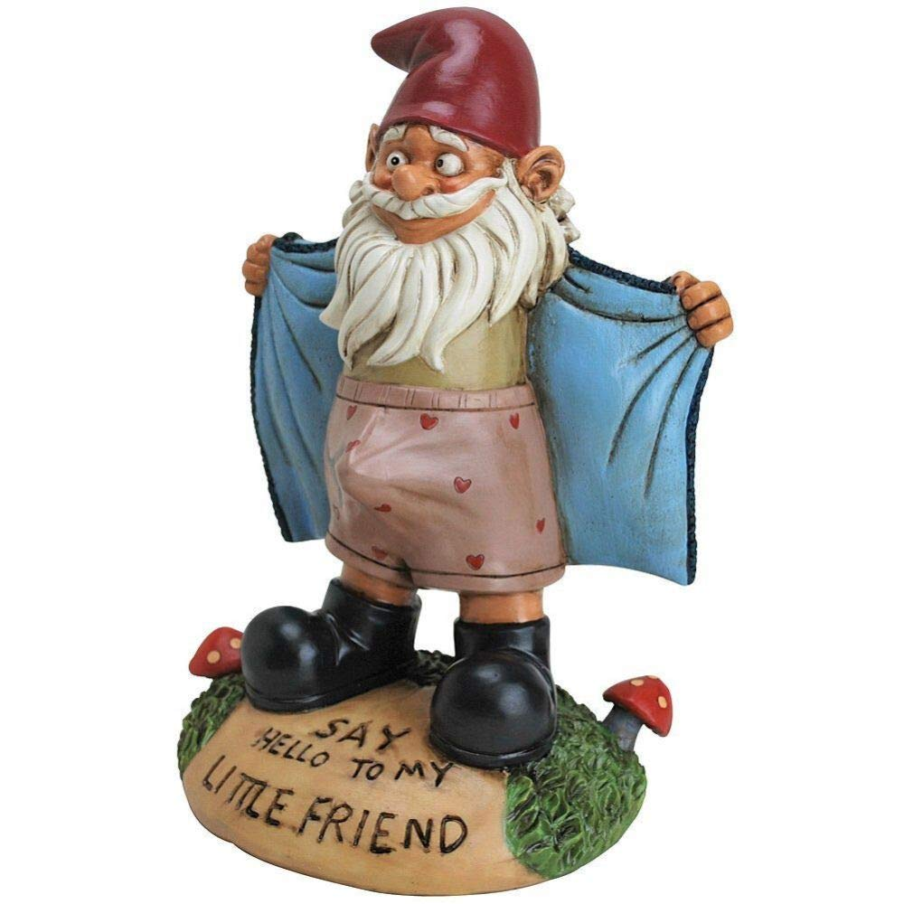 Baga Goodies Perverted Garden Gnome Flasher - Funny Novelty Gift - Say Hello to My Little Friend! by Baga Goodies