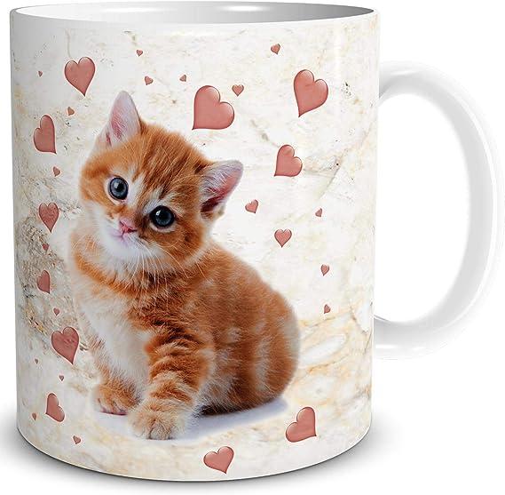 Triosk Taza de gato divertido con diseño de gatos, corazones, regalo para amantes de los gatos, mujeres, amigas, mamá, abuela, compañera: Amazon.es: Hogar