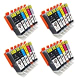 GREENSKY 24 Pack Compatible Ink Cartridge Replacement For Canon PGI-250 & CLI-251 (4BX,4B,4C,4M,4Y,4G) Compatible With Canon PIXMA MG5520 MG5420 MG6320 MG7120 MX722 MX922 iP7220 iP8720 iX6820 etc