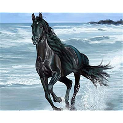 CaptainCrafts New Paint by Numbers for Adults Beginner Children DIY pre-Printed Linen Canvas Oil Painting Kits Home House Decor Gift 16x20 inch - Black Horse Running in The surf (Frameless): Toys & Games