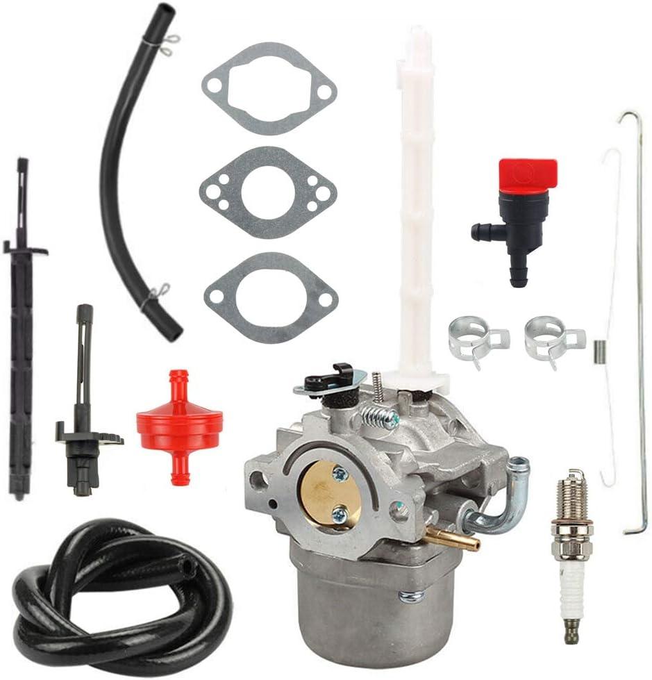 Panari 796122 Carburetor with Tune up Kit for Briggs /& Stratton 794593 696737 793161 Ariens MTD Cub Cadet Snowblower Snowthrower