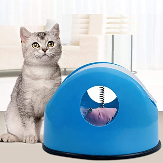 Juguete Para Gatos, Juguetes Para Gatitos-Juguete Para Gatos Disco ...