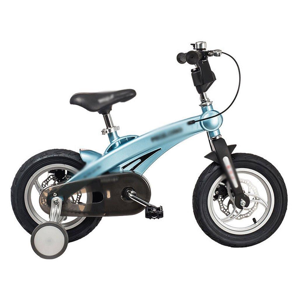 殿堂 自転車 自転車 inch 子供と男性のための子供用マウンテンバイク12/14/16インチフライングシップブルーデュアルディスクブレーキ+ケトル 12 B07FC9RKNS inch B07FC9RKNS, グラスパパ:c8473e88 --- arianechie.dominiotemporario.com