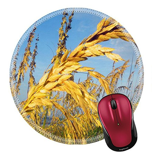 Price comparison product image Liili Round Mouse Pad Natural Rubber Mousepad IMAGE ID: 20294636 Sea Oats by the Ocean