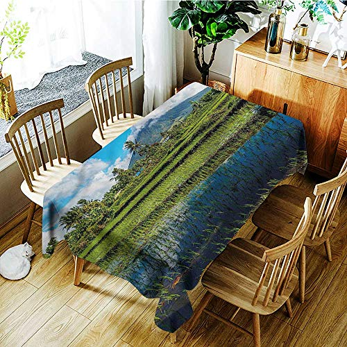 familytaste Volcano,Rectangular Table Cloth Mayon Mountain Philippines 60