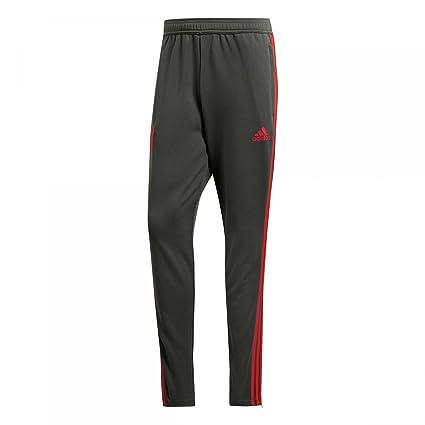 621780f926c Amazon.com : adidas 2018-2019 Bayern Munich Training Pants (Utility Ivy) :  Sports & Outdoors