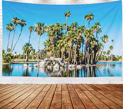 Fullentiart Wall Tapestry, Map Large Tapestry Wall Hanging 80x60inch Phoenix View The Lake in Park which Has Been by Magazine As Best City Parks A Encanto Decoration Room Holiday Décor Tapestries