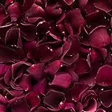 Petali di rosa essiccati, colore: bordeaux, 2 litri