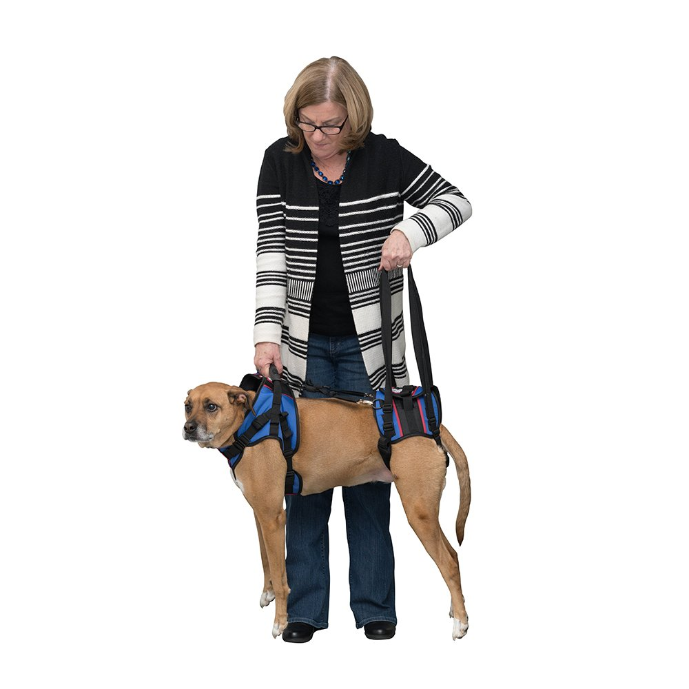Walkin' Lift Full Support Harness for Medium Dogs 50-69 lbs