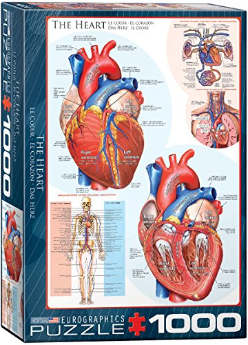 EuroGraphics Human Body (The Heart) Puzzle (1000-Piece)