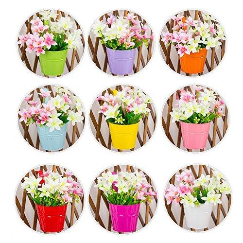 Blumentopf zum Hängen, sortiert 10 PCS, bunt, abnehmbaren Blumentopf aus Metall Hängen auf Balkon Wand Garten Home Decor