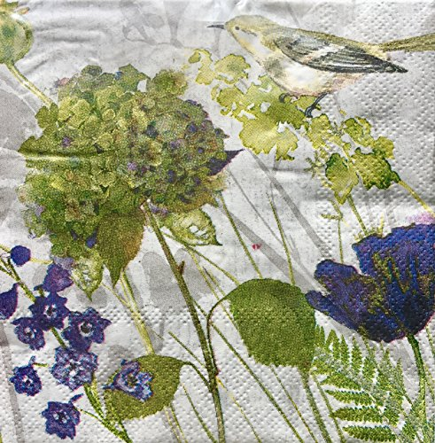 Cypress Home Periwinkle Floral Bird Cocktail Beverage Paper Napkins, 40 pcs