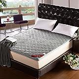 Three-dimensional bamboo charcoal mattress/thickened tatami mattress/folding mattress/single double mattress/sea mattress-A 120x200cm(47x79inch)