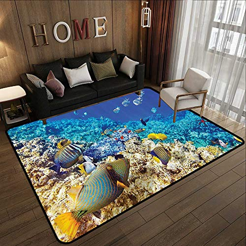Carpet Flooring,Ocean Decor Collection,Clear Underwater Sea Animal World with Corals and Tropical Fishes and a Starfish Egyptian Sea Pri 55