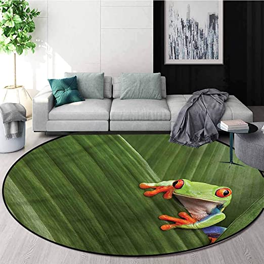Amazon Com Animal Modern Simple Round Rug Exotic Frog From Costa