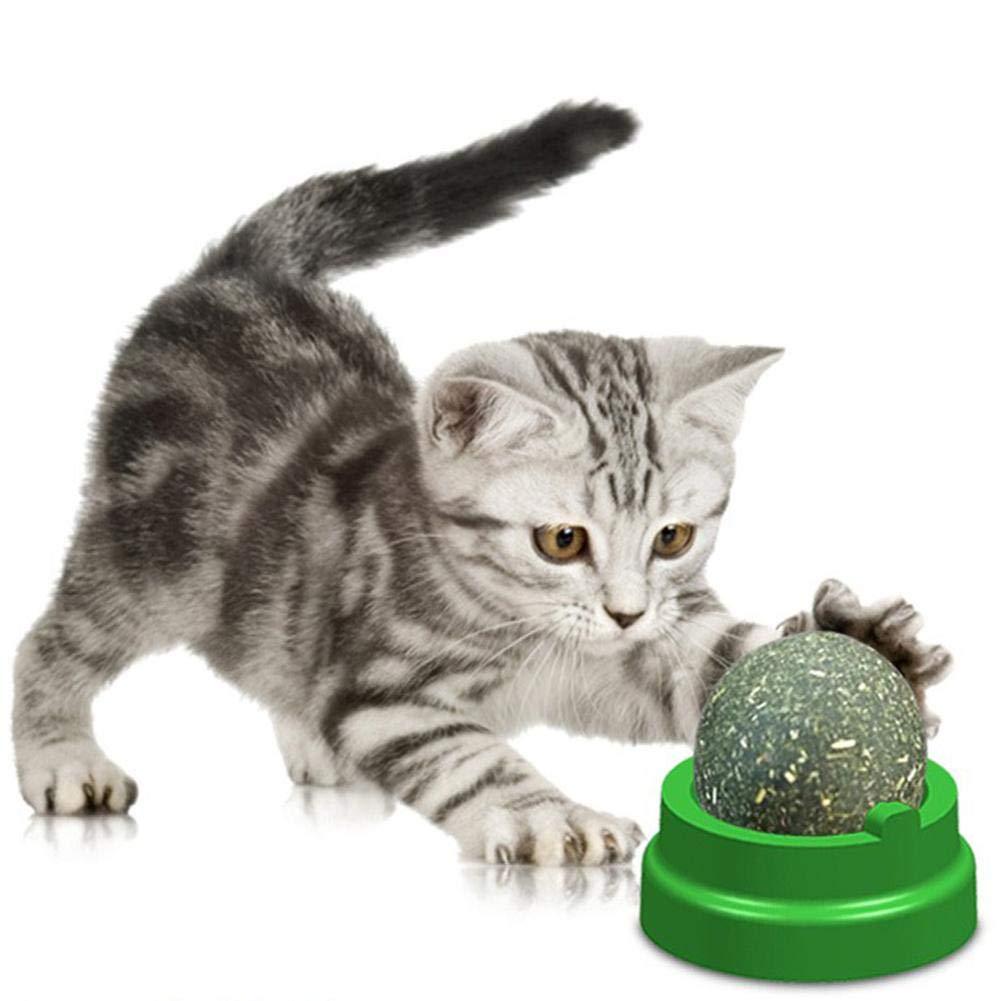 Palla Naturale di Erba gatta Exuberanter Giocattolo per Gatti con Erba gatta Giocattolo per la Pulizia dei Denti per Denti sani e Aiuta con alito Cattivo