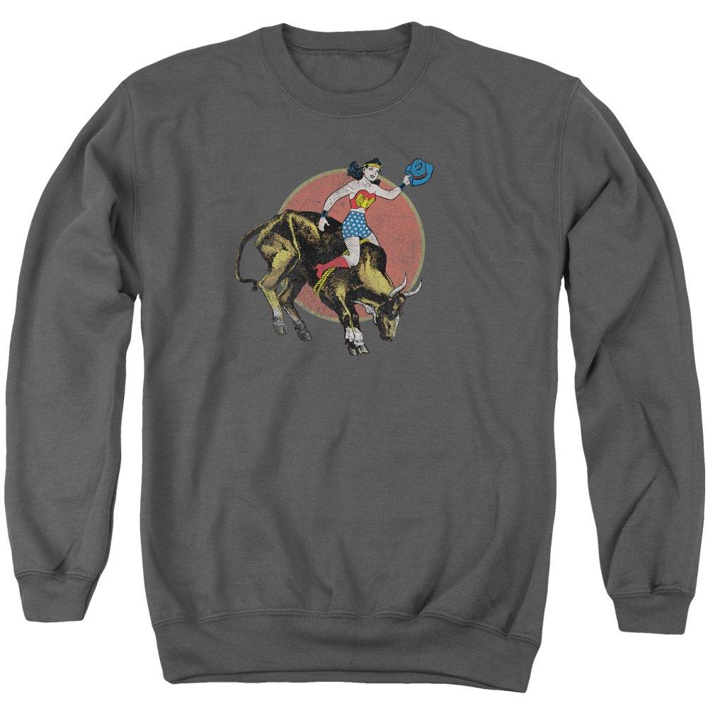 Justice League - Männer Bull Rider Pullover