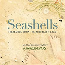 Seashells: Treasures from the Northeast Coast