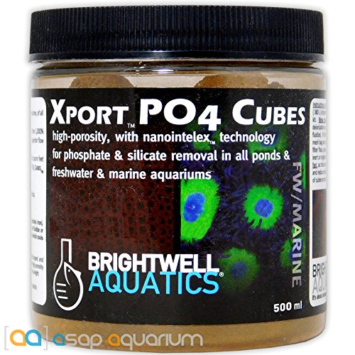 Brightwell Aquatics Xport-PO4 Cubes-1/2 Cubes, Ferric Oxide Doped, Phosphate-Adsorption Media, - Media Adsorption Phosphate