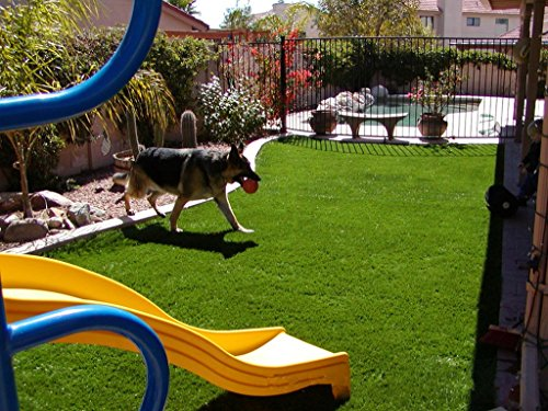 GOLDEN MOON Artificial Grass Rug Series PE Indoor/Outdoor Green Decorative Synthetic Artificial Grass Turf Area Rug 1 1/2