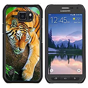 LECELL--Funda protectora / Cubierta / Piel For Samsung Galaxy S6Active Active G890A -- soñolienta linda selva tigre animales cansados --