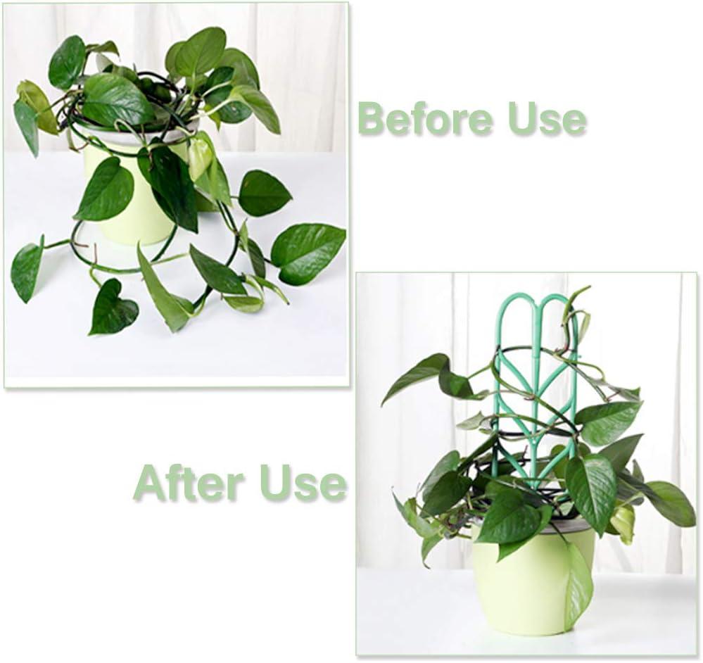 Enrejado para plantas de interior para plantas trepadoras, paquete ...