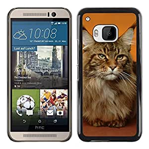 PC/Aluminum Funda Carcasa protectora para HTC One M9 Maine Coon Cat Orange House Pet / JUSTGO PHONE PROTECTOR