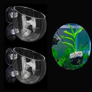 Ailinda 2PCS Crystal Glass Aquatic Plant Cup Pot Holder with Suction Cups for Fish Tank Aquarium Decor