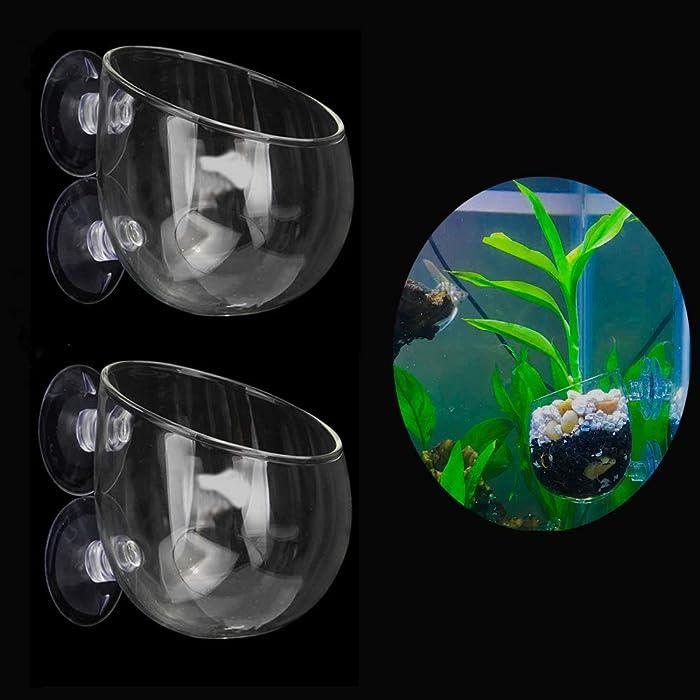The Best Pot Fish Decor