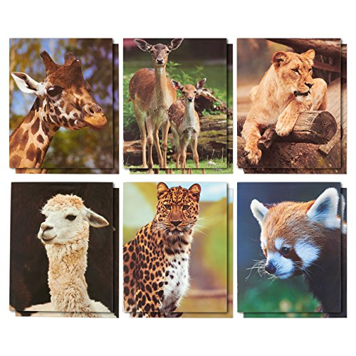 12 Pack Pocket Folders - File Folders with Two Pockets - 6 Adorable Glossy Wild Animal Designs- Letter Size Homework Folders Perfect for Staying Organized at School and Home - 9.25 x 12 Inches