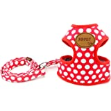 Smalllee_Lucky_Store Soft Mesh Nylon Vest Dog Harness Leash Set Leads