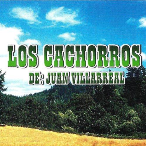 ... Los Cachorros De Juan Villarreal