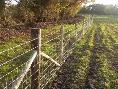 50m of C8/80/15 Stock Fencing for Farms/Cattle/Sheep/Pigs Uniwire