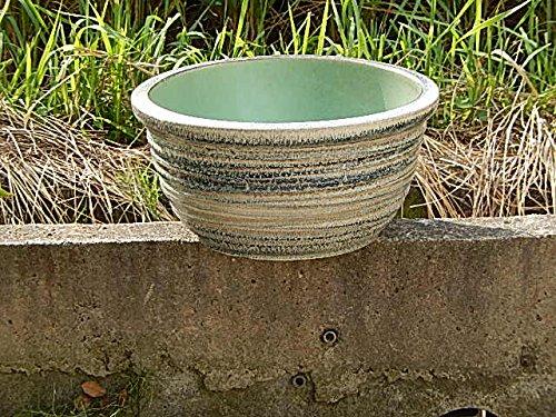 水鉢 スイレン鉢の用途はいろいろ 飾って楽しむ メダカ鉢としても アンスリウムの水鉢としても 信楽睡蓮鉢 B00NXKE3BQ