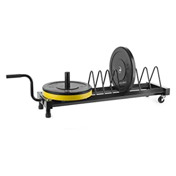CAPITAL SPORTS Plarak Jaula para discos portátil 500 kg máx. (Soporte para discos de